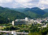 150 одаренных пензенских детей отправятся в пансионат «Приморский»