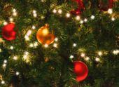 Новогодняя елка в Пензе появится до 1 декабря