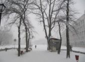 31 декабря в Пензе ожидается снегопад