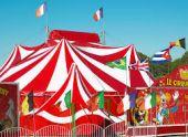 Мэр Пензы рассказал о судьбе дома рядом со строящимся цирком
