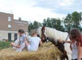 Уникальный жилой комплекс «Лугометрия» в Пензе станет «территорией жизни»