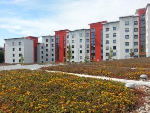 365 семей Пензенской области получат жилищные сертификаты в этом году