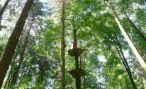 В Пензе открыли веревочный парк