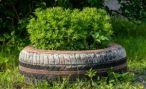 Депутаты Пензы выступили против запрета использования шин для благоустройства